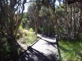 Image for Piney Lakes Boardwalk-Winthrop