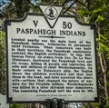 Image for Paspahegh Indians - V50
