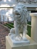 Image for LGT Lions