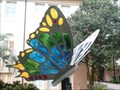 Image for Genus Kaleidoscopus - Butterfly - City Hall, Lakeland, Florida. USA.