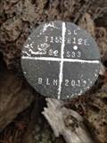 Image for T15S R12E S32 33 [T16S R12E S5] SC COR - Deschutes County, OR