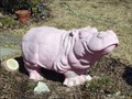 Image for Pink Hippo - Hutto, TX
