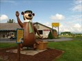 Image for Yogi Bear At Jellystone Park™ - Luray VA