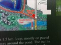 """Image for """"You are here"""" at the Butternut Trail, Uxbridge, ON"""