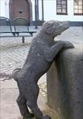 Image for Barking dog at Dorfbrunnen Brohl-Lützing - Rheinland-Pfalz / Germany