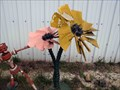 Image for Sunflowers - Hammonton, NJ