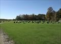 Image for Sommerfeld Mennonite Church - New Bothwell MB