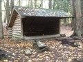 Image for South Bradford Forest Leanto - Steuben County, NY