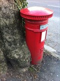 Image for Tree eating Post Box - Ninian Road, Cardiff, Wales, UK