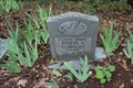 Image for Edwin A. Albright - Walnut Creek Cemetery - Henderson County, TX, USA