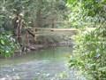 Image for Bamboo Footbridge, West - Malumpati, Philippines