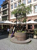Image for Old Draw Well - Place du Marché aux Cochons de Lait - Strasbourg, France, Alsace