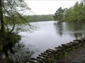 Image for High Dam Tarn -  Finsthwaite, Cumbria, UK.