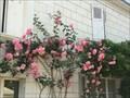 Image for Le jardin village de Chedigny - France