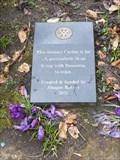 Image for Milton Park Sensory Garden - Alsager, Cheshire, UK.