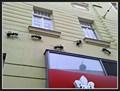 Image for Mravencení - Brno, Czech Republic