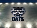 Image for Cats Home, Geelong, Victoria