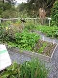 Image for Organic Allotment, CAT, Corris, Gwynedd, Wales, UK