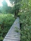 Image for Boardwalk, De Kevie, Tongeren, Limburg, Belgium