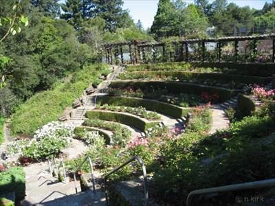 berkeley rose garden rose gardens on waymarkingcom - Berkeley Rose Garden