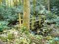 Image for Jones Branch Bridge #3 - Appalachian Trail - Erwin, TN