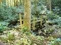 Image for Jones Branch Bridge #3 - Appalachian Trail - Erwin, TN