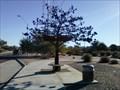 Image for The Iron Tree Bus Stop - Scottsdale, Arizona
