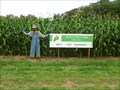 Image for Hicks Family Farm Corn Maze - Charlemont, MA