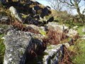 Image for Heckwood Tor Granite Quarry, West Dartmoor.