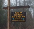 Image for Turkey Hill State Forest - New York