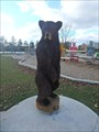 Image for Brown Bear - Mooney's Bay Park - Ottawa, ON
