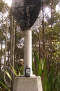 Image for Vincent, Heaten Sate Forest, NSW