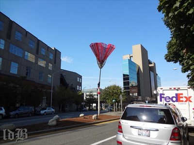Angie`s Umbrella `blows around` in a median strip in downtown Seattle.