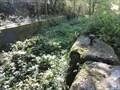 Image for Walton Top Lock - Former Barnsley Canal - Walton, UK