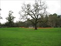 Image for Hap Magee Ranch Park - Danville, CA