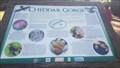 Image for Cheddar Gorge Flora & Fauna - Rotary Garden - Cheddar, Somerset