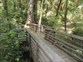 Image for Bob Kirsch Trail Bridge - Boulder Creek, CA
