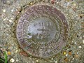 """Image for AW0758 - """"P 1183"""" bench mark disk - Baytown, TX"""