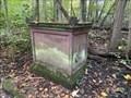 Image for Goethe Stein/ Goethe stone