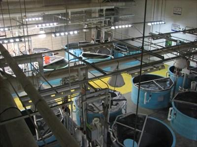 Texas Freshwater Fisheries Center - Athens, Texas - Fish