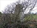 Image for Llangwyllog, Hafod Farm Triangulation Pillar