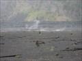 Image for Hawaii's Volcanoes National Park - Volcano, HI