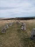 Image for Shovel Down Stone Row 2, Dartmoor, Devon, UK