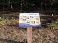 Image for Habitat: Forest - Boundary Creek Natural Resource Area - Moorestown, NJ