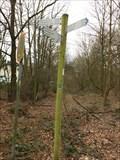 Image for Hiking Trail Arrows around Liblarer Lake, Grubenweg, Erftstadt - NRW / Germany