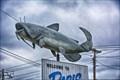Image for Big Cat Fish - Paris TN