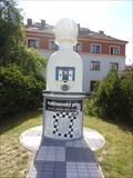 Image for First out in chess history / První aut v dejinách šachu - Pelhrimov, Czech Republic