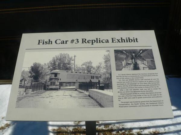 Fish Car #3 Replica Exhibit