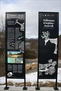 Image for Ausevika helleristningsfelt