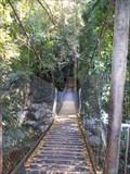 Image for Second Suspension Bridge - Lower Falls Walk, Minnamurra Rainforest, Jamberoo, NSW